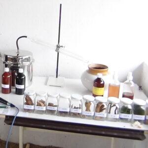 Panchgavya ayurvedic medicines